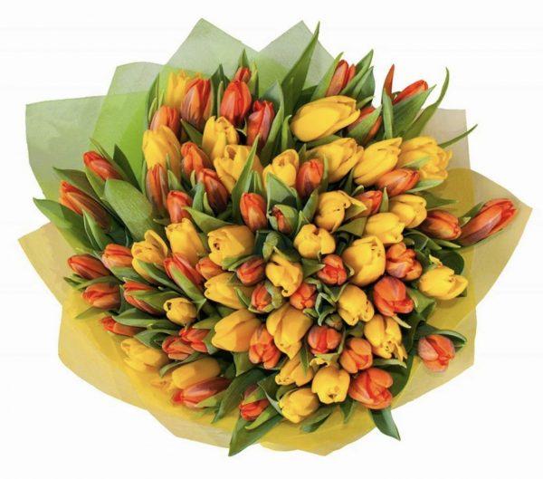 Красно-желтый букет из 49 тюльпанов
