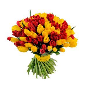 Красно-желтый букет из 49 тюльпанов — Букеты цветов