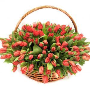 75 тюльпанов в корзине — Цветы в корзине