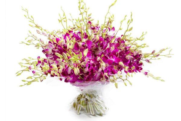 Букет из 51 орхидеи Дендробиум