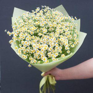 Букет из ромашек и рускусов — Букеты цветов