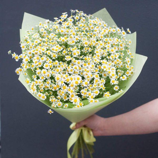 Букет из 15 ромашек — Букеты цветов