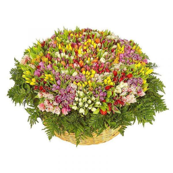 Большой букет тюльпанов 1001 шт