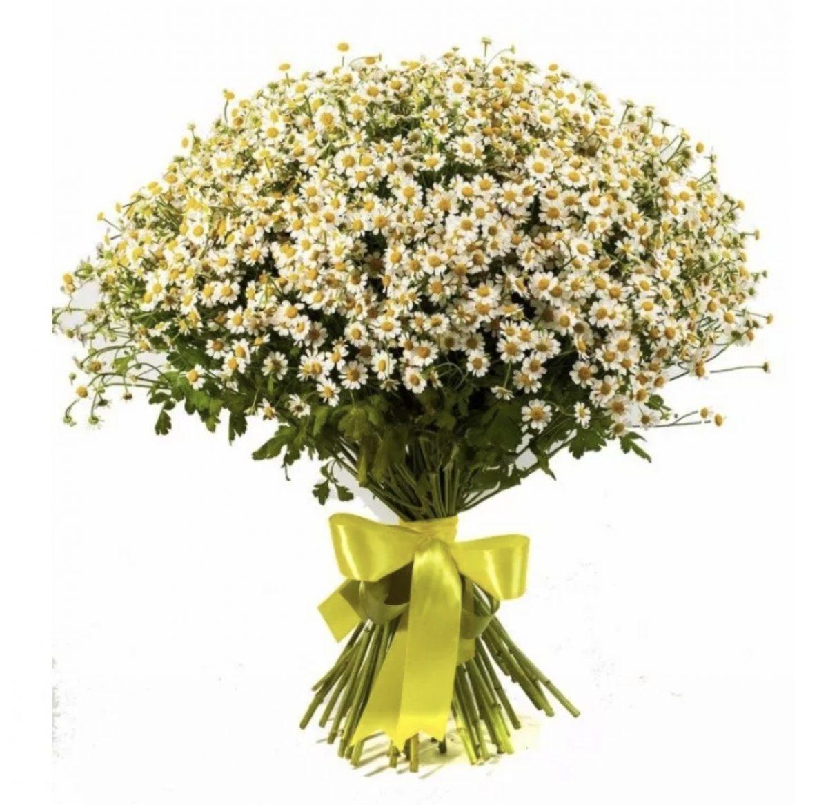 Цветы доставка москва полевые цены, букет москва