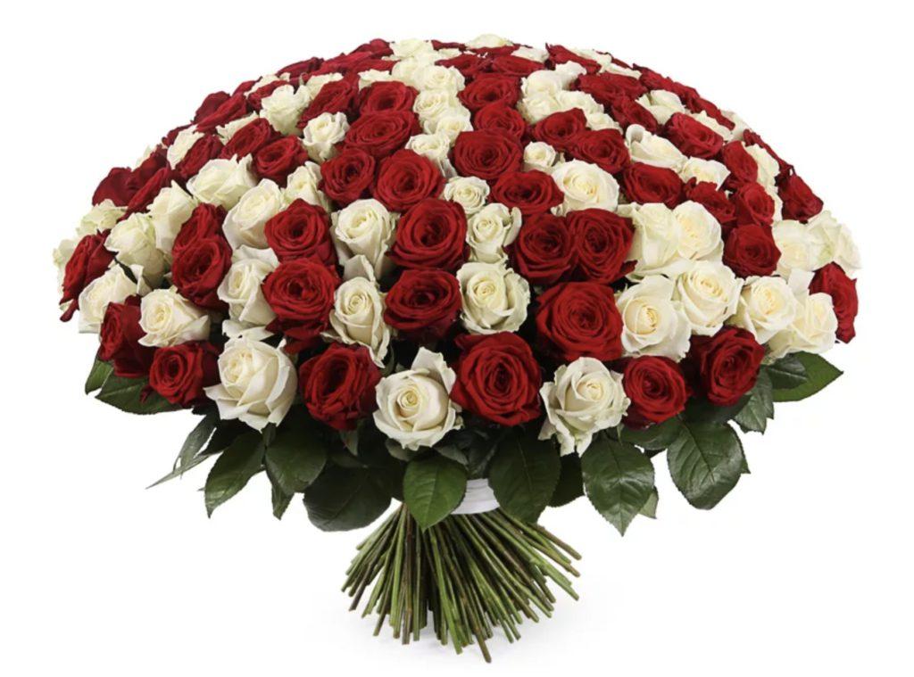 Букеты елки, букет розы клеопатра фото