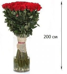 Роза 200 см (2 метра) 101 шт. Букет