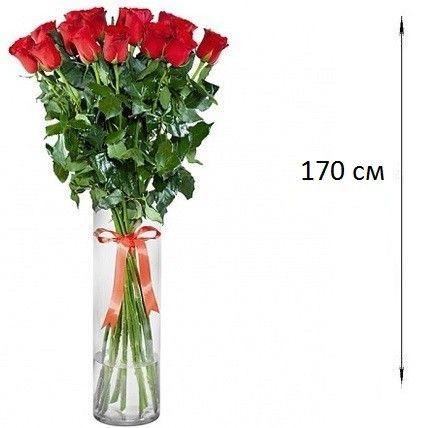 Букет из 25 роз 170 см