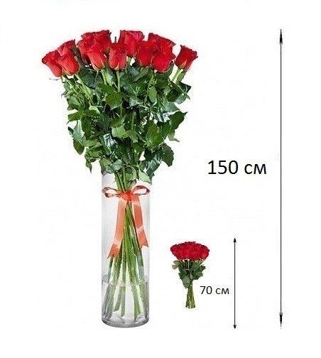 Букет из 51 розы 150 см