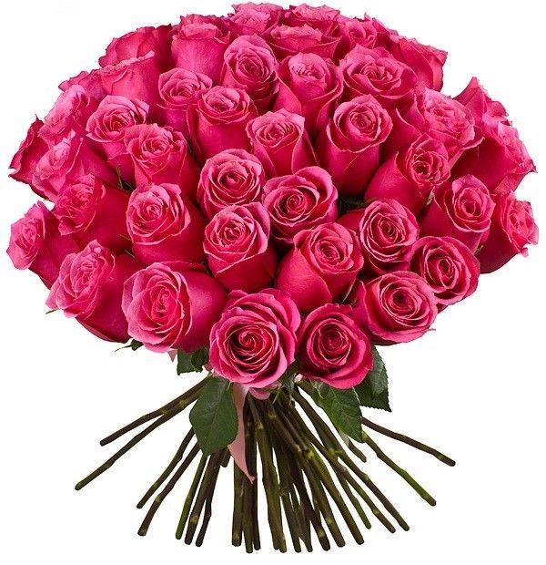 Букет из 51 премиальной розы