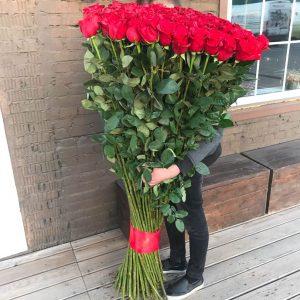 Букет из 101 розы 150 см — Букеты цветов