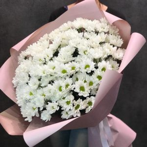 Букет из 101 крупной ромашки — Букеты цветов
