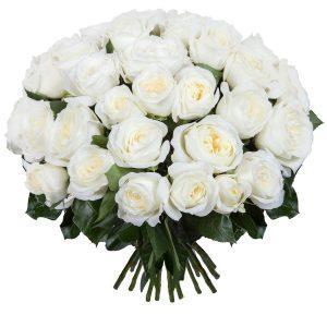 """Букет из пионовидных роз """"Alabaster"""""""