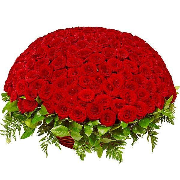 Букет из 201 красной розы в корзине