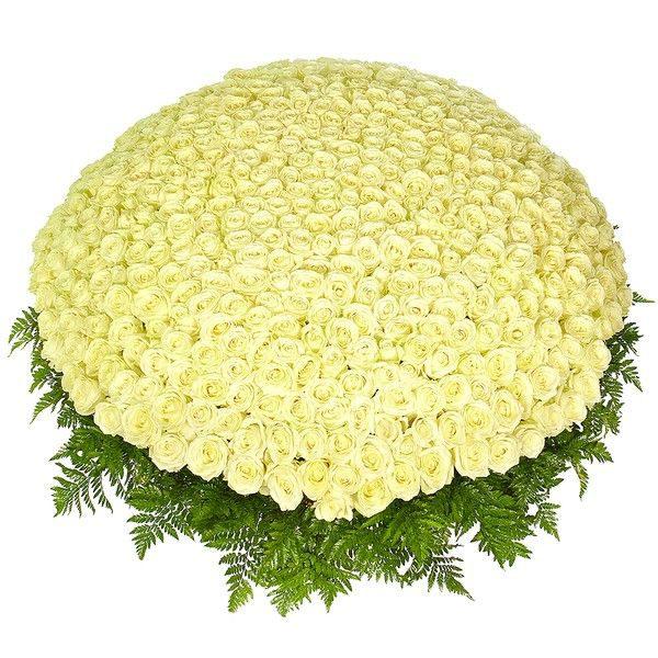 Букет из 501 белой розы
