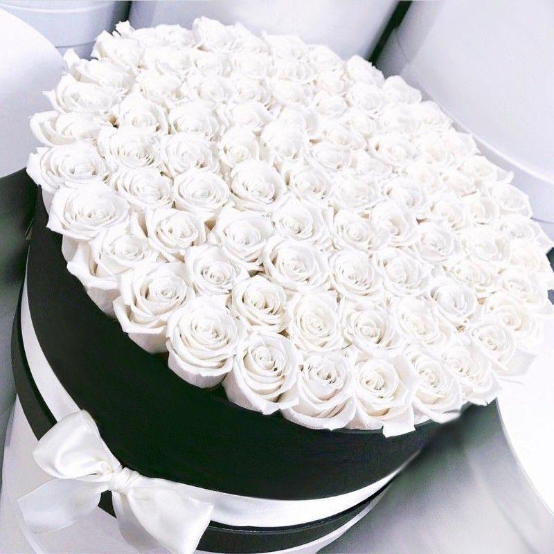 миллионы белых роз картинки просмотрела свои