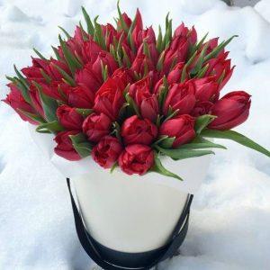Коробка с 45 красными тюльпанами