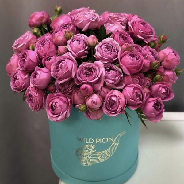 Розы премиум сорта Мисти Баблс