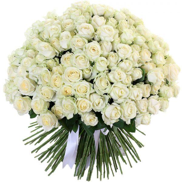 Букет из 201 белой розы — Букеты цветов