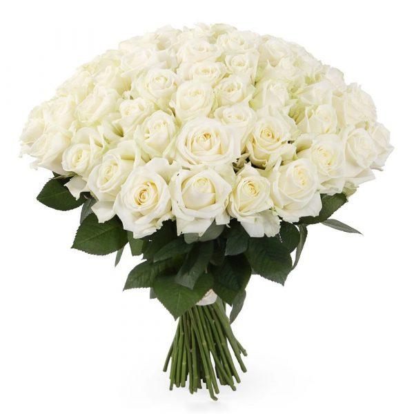 Букет из 51 белой розы — Букеты цветов