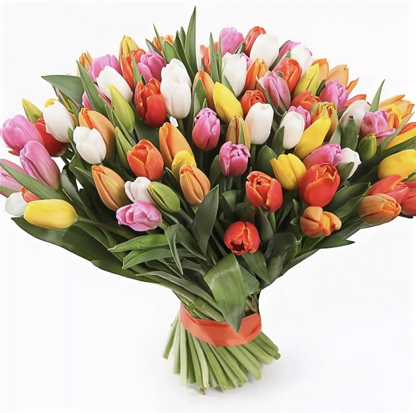 Большой букет тюльпаны купить москва, цветов