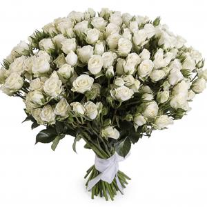 Букет из 51 кустовой белой розы
