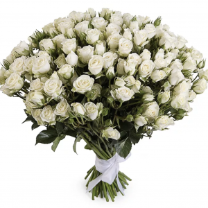 51 кустовая белая роза — Букеты цветов