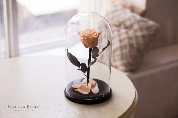 Вечная роза в колбе №1