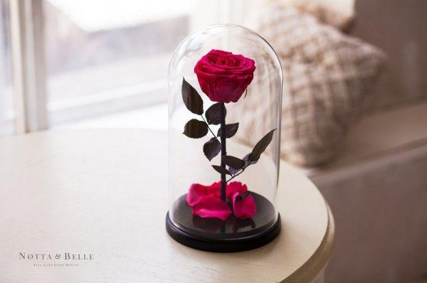Вечная роза в колбе №2