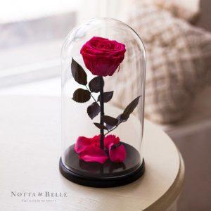 Вечная роза в колбе №3