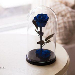 Вечная роза в колбе №4
