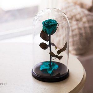 Вечная роза в колбе №5