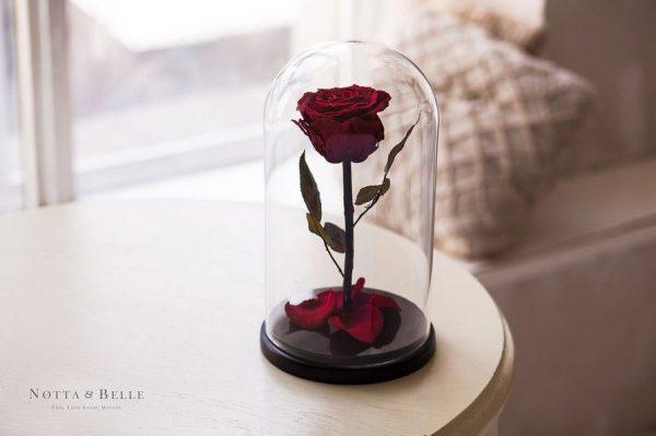 Вечная роза в колбе №7