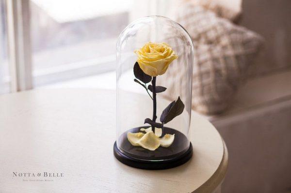 Вечная роза в колбе №8