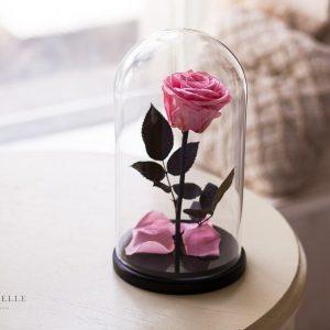 Вечная роза в колбе №9