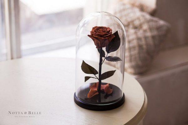 Вечная роза в колбе №10