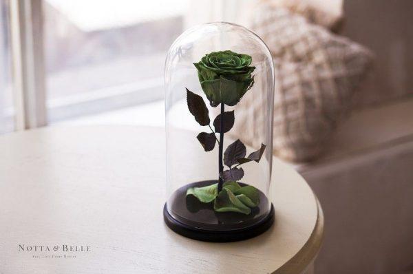 Вечная роза в колбе №11