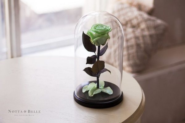 Вечная роза в колбе №12