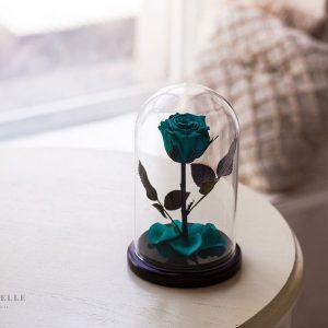 Вечная роза в колбе №15