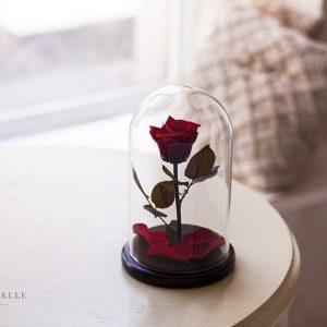 Вечная роза в колбе №16