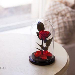 Вечная роза в колбе №18