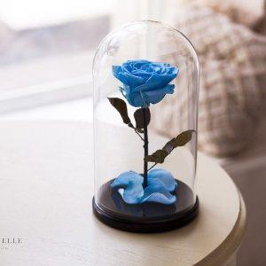 Вечная роза в колбе №19