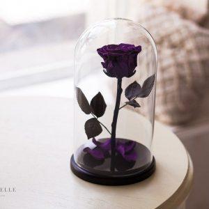 Вечная роза в колбе №21