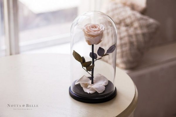 Вечная роза в колбе №22