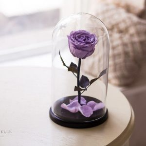 Вечная роза в колбе №23