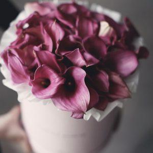 Флобокс из розовых калл