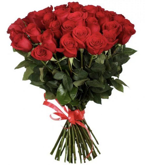 Букет 35 роз (70 см) — Букеты цветов