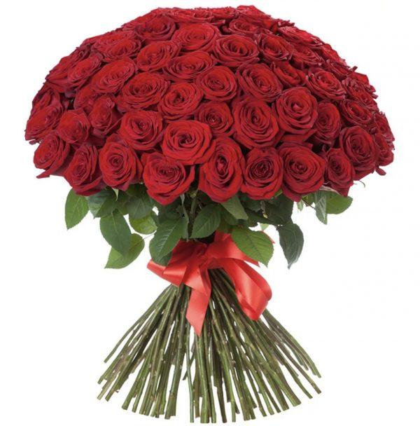 Букет из 101 розы (70 см) — Букеты цветов