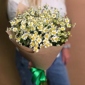 Букет из ромашек «Внимание» — Букеты цветов