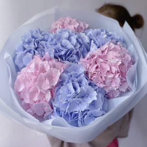 Букет из 7 гортензий микс — Букеты цветов