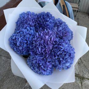 Букет из 7 синих гортензий — Букеты цветов